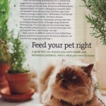 article about pet nutrition