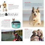 pages from Pet Quarterly