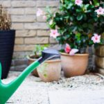 Green watering can on the ground
