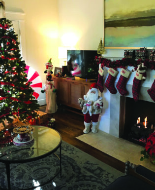 Holiday stockings and tree
